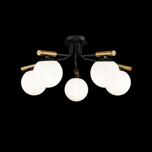 Потолочный светильник Paolina FR5011CL-05B