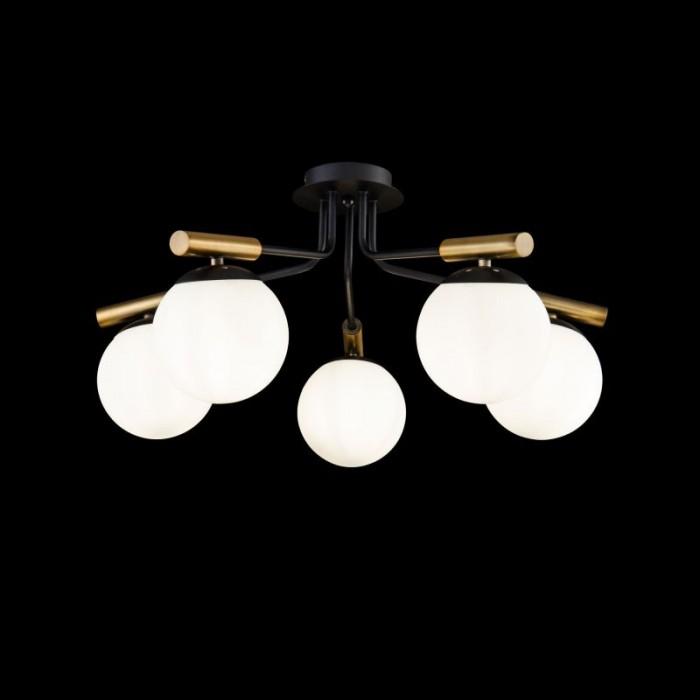 1Потолочный светильник Paolina FR5011CL-05B