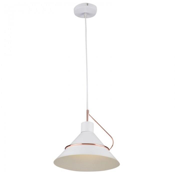1Подвесной светильник Amis FR5025PL-01W