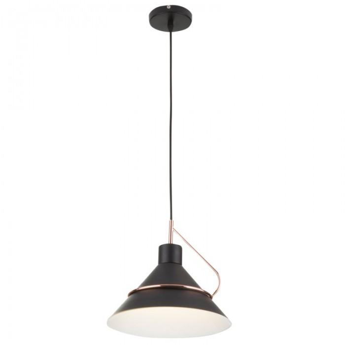 1Подвесной светильник Amis FR5025PL-01B