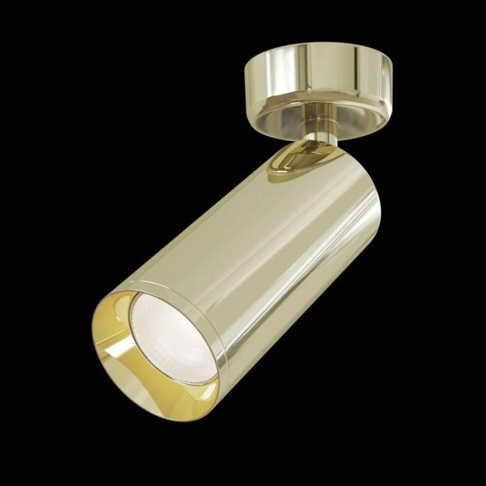 1Потолочный светильник Focus C017CW-01G