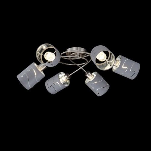 FR5001CL-06N Потолочный светильник Joell