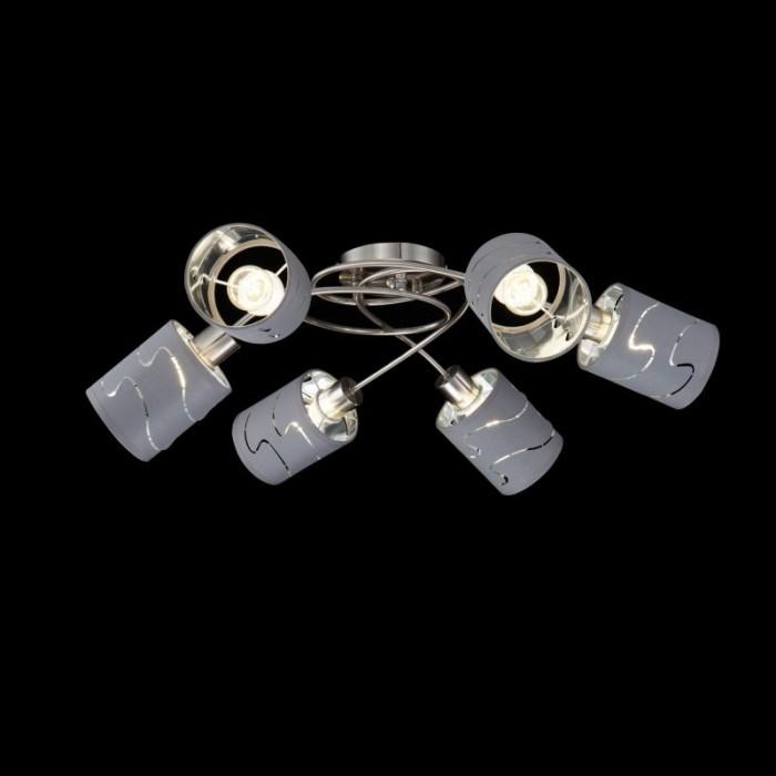 1Потолочный светильник Joell FR5001CL-06N