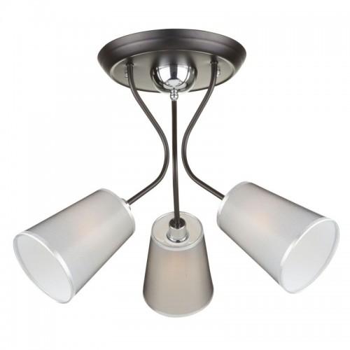 Потолочный светильник Odri FR5030CL-03B